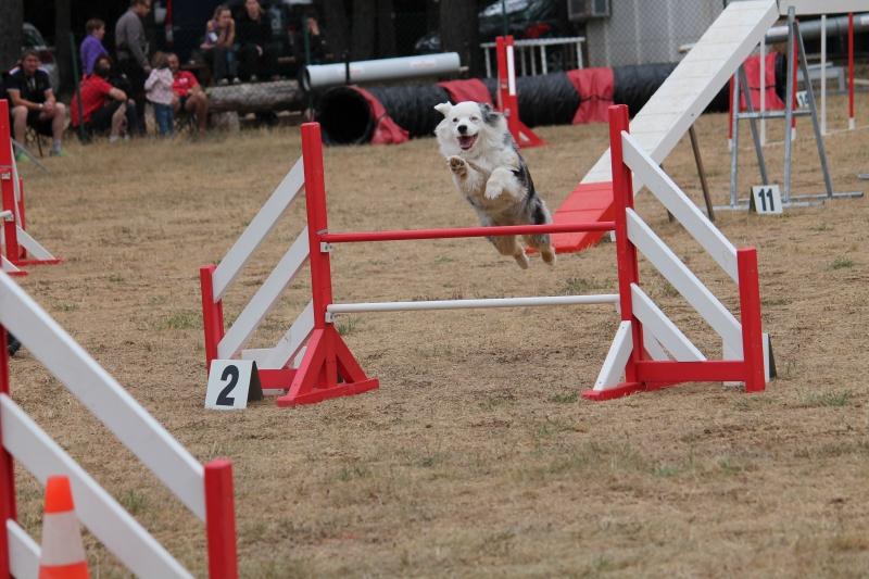 saut2